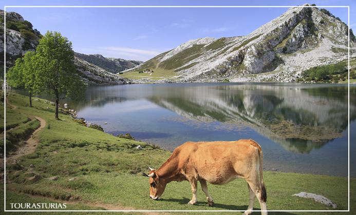 Visita a los lagos de covadonga