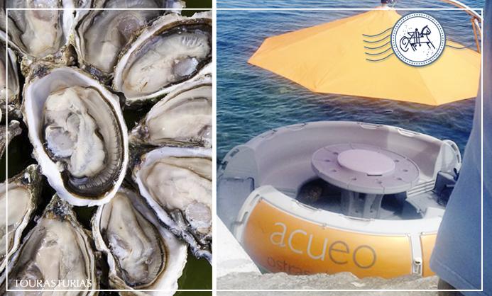 Ostras en Asturias: al ritmo de la marea