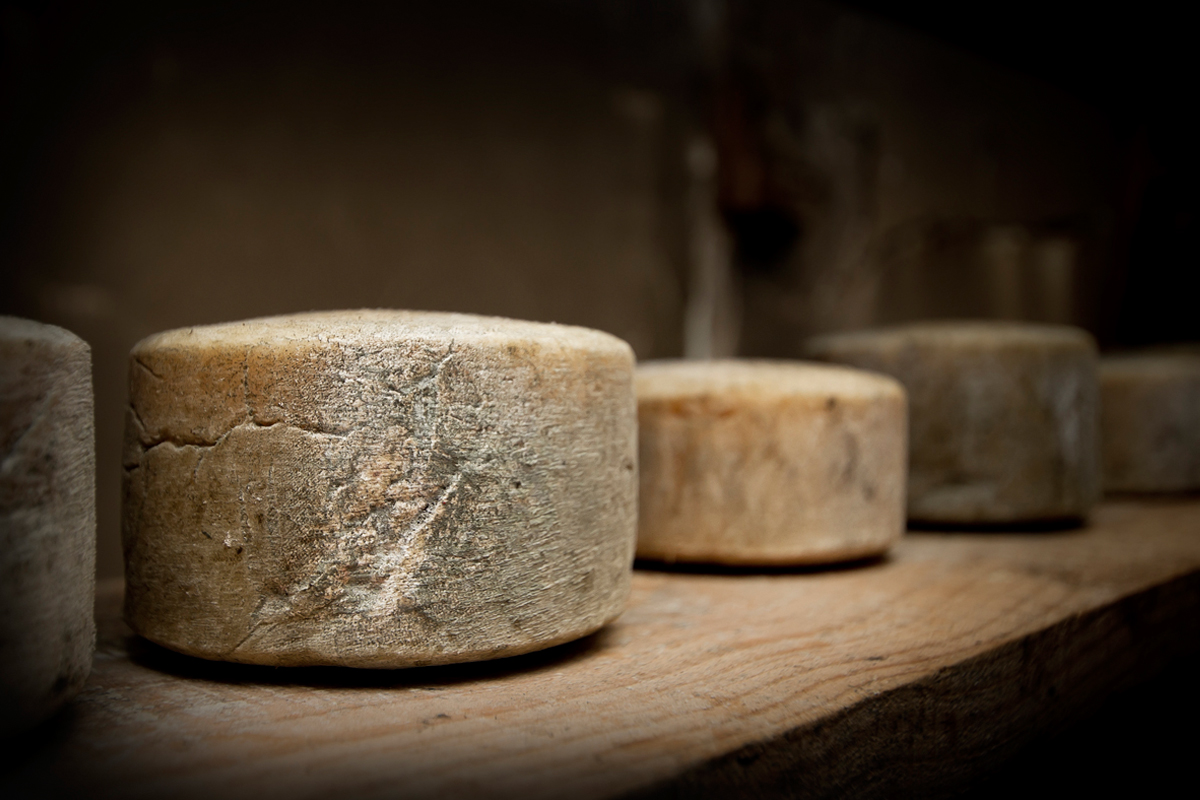 Visita privada a una quesería de Cabrales