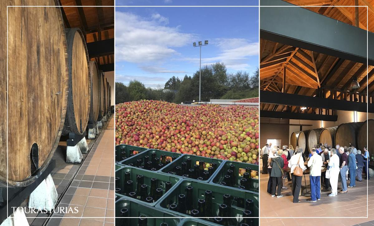 Visitando llagar de sidra en Asturias